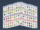 WH+Question+Cards+Pack+-+Autism+%2F+Speech+%26+Language+%2F+EYFS+%2F+School+-+Level+2