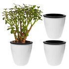 Evelots 3 Pack Of Self Watering Planters, Small Or Large, White Flower Pots