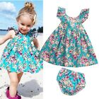 baby boutiques in shreveport la - US Boutique Kids Baby Girls Summer Floral Dress Sundress Briefs Outfits Clothes