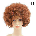 Funny Clown Curly Afro Circus Fancy Hair Wigs Cosay Disco Costume s