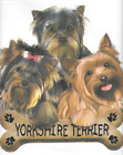 kid t-shirt Yorkshire Terriers puppy dog shirt toddler youth US size new