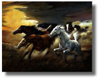 Wild Cowboy Horses RunningFree On Prairie  Ruane Manning Wall Art Print Picture