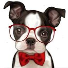 Iron Clothes Print Iron On Appliques Dog Patches Heat Transfer Stickers
