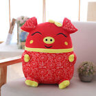 2019 Chinese Zodiac Pig Doll Plush Toy Festival Mascot New Year Home Decor Gifts