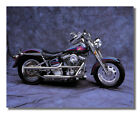Harley Davidson Customized Fatboy Motorcycle Photo Wall Picture 8x10 Art Print $8.87 USD on eBay