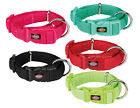 Puppy Dog Collar Set Of 5 Xxs-S 15-25Cm Puppy Collar Id (5 Different Colors)