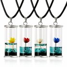 Natural Dried Flower Daisy Necklace Wishing Bottle Glass Pendant Charm Jewelry