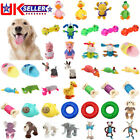 Various Pet Chewing Squeaker Toy for Dog Puppy Chew Interactive Durable Toys