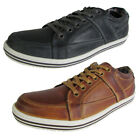 Steve Madden Mens Ropperr Lace Up Fashion Sneaker Shoe