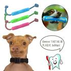 Puppy Chew Pet Molar Stick Tooth Clean Brushing Stick Toothbrush Pet Supply