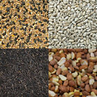 Wild Bird Seed Food Common Mix Feed Mixture Peanuts Sunflower Niger Suet Pellet