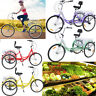 Adult Tricycle 7 Speed Cruise Bike 20 Inch 3 Wheels Adjustable Trike with Basket
