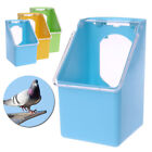 Pigeon-Feeder Water Feeding Plastic Food Dispenser Parrot Container Supplies