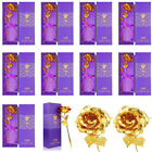 Luxury 24k Gold Plated Foil Rose Flower Dipped Best Valentine's Day Gift For Her