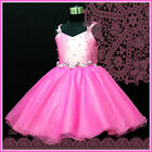 HOT Pink X'mas Party Flowers Girls Dress SZ 2-3-4-5-6-8