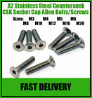 A2 Stainless Steel Countersunk Socket Screws Allen Head Screw Bolts - M3 and M4