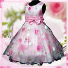 Pink Floral Princess Fairytale Wedding Flower Girls Dresses SIZE 2.3,4,5,6,8.10Y