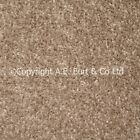 Venice Beige 604 4mWide Carpet RRP £8Sqm  Lounge Bedroom Stairs Cheap Only £3.99