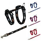 NEW KITTEN HARNESS & LEAD SET 21 TO 34 CM - PLAYFUL KITTY AND MOUSE MOTIFF 4144