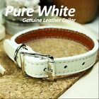 Luxury and Cute Dog Collar- Pure White Genuine Leather w/ Retractable Leash