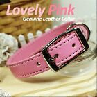 Luxury and Cute Dog Collar- Lovely Pink Genuine Leather w/ Retractable Leash