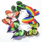 10pcs Butterfly 3D Fridge Magnets Room Car Wall Decorations Magnetic Crafts