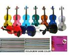 New Student Acoustic Violin, Case, Bow, Rosin, Bridge+Extra E String for Replacement