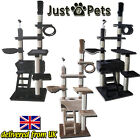 DELUXE JUST4PETS CAT KITTEN TREE HOUSE PLAY FUN ACTIVITY CENTRE POST SCRATCHING