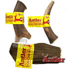 100% Natural Antler Dog Chews The Hypo-Allergenic Clean Dog Chew Like Stagbar