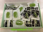CANNABIS  Lollipops sweets THC FREE HEMP ORIGINAL AMSTERDAM