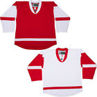 Customized Hockey Jersey & Sock COMBO with Name and Number! Detroit Redwings