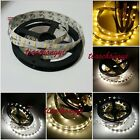 5M 12V 300LED 5630 SMD60led/m Flexible Strip Light Neutral White Warm Cold NEW