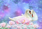 p37 Personalised poster made to order custom special present Swans in love