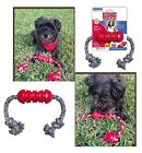 KONG Dental Toy Makes Gum & Teeth Cleaning Fun for Your Dog - Includes Floss !!!