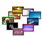 "iRulu 7"" 16GB Android 4.2 Tablet PC Dual Core Dual Cam WIFI A23 1.5GHz 9 Colours"