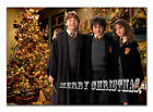 CHRISTMAS CARD; k020 Harry Potter; Any name, relationship, text; special great