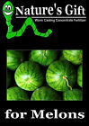 MELON PLANTS SEEDS, ORGANIC WORM CASTING LIQUID FERTILIZER CONCENTRATE