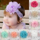 Baby Infant Girl Toddler Chiffon Elastic Lace Flower Headband Hair Band