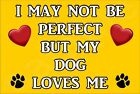I May Not Be Perfect But My Dog Loves Me Puppy (L-Y) -Jumbo Magnet Gift/Present