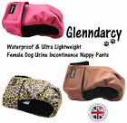 GLENNDARCY FEMALE DOG URINE INCONTINENCE NAPPY PANTS - XS TO XXXL SIZES
