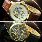Men's Superior Gold Case Men Hollow Skeleton Automatic Mechanical Leather Watch