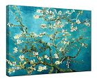 Almond Blossom Van Gogh Painting Reproduction Canvas Print Pictures With Frame