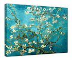 Art - Canvas Print Wall Art Almond Blossom Van Gogh Painting Reproduction Pictures
