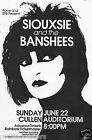 0512 Vintage Music Poster Art - Siouxsie And The Banshees
