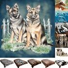 Animal Print Faux Fur Throw Double King Size 3D Blanket Sofa Bed Large Fleece