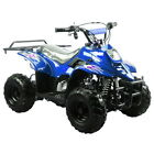 NEW 110CC KID/YOUTH ATV QUAD MOUNTOPZ COOLSTER 3050C