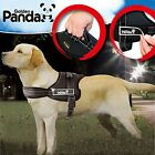 Pet Dog Harness Large Dog High Quality Harness Durable Strong Safe Nylon Harness