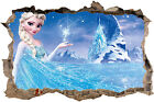 DISNEY ELSA FROZEN SMASHED HOLE IN WALL DECAL
