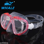 Snorkeling Half Face Mask Goggles Water Diving Scuba Snorkel Whales Mount
