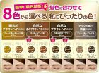 EXCEL Powder & Pencil Eyebrow EX w/ Spoolie Screw Brush Japan 8 Colors